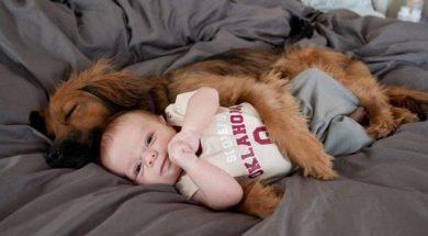 dzieci i psy -0