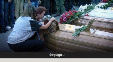 W czasie pogrzebu do trumny podchodzi piesek. To, co zaczyna robić, doprowadza do łez…