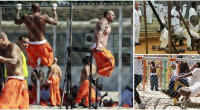 Prison-Workout-Routine