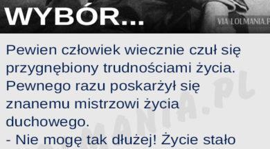 wyborx