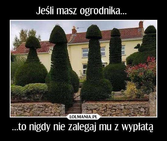 Nie zadzieraj z ogrodnikiem…