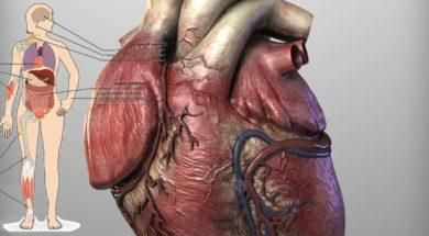 10-foods-that-will-clean-your-arteries-and-protect-you-from-heart-attack