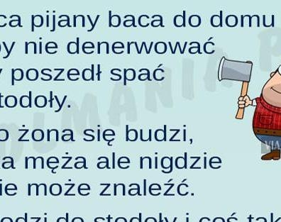 bacax