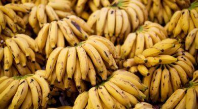 banana-758×379