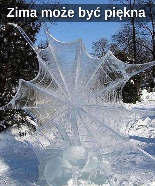 Lodowa pajęczyna