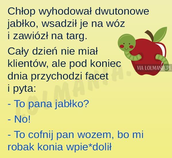 Dwutonowe jabłko