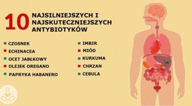 antybiotyk