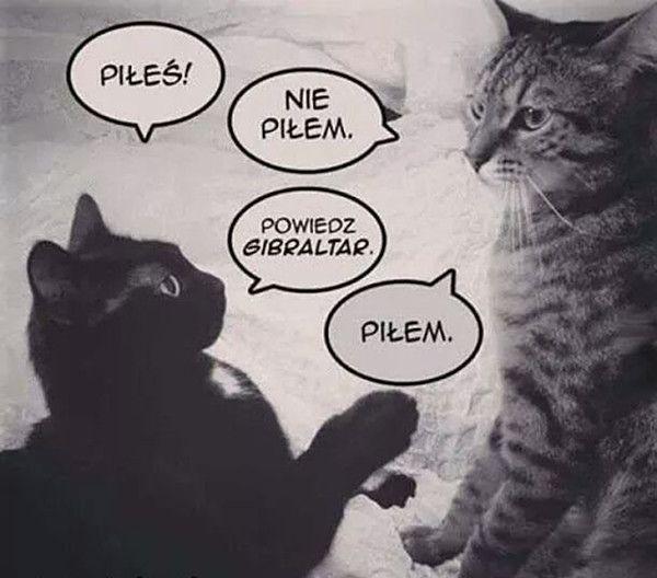 Trudne rozmowy