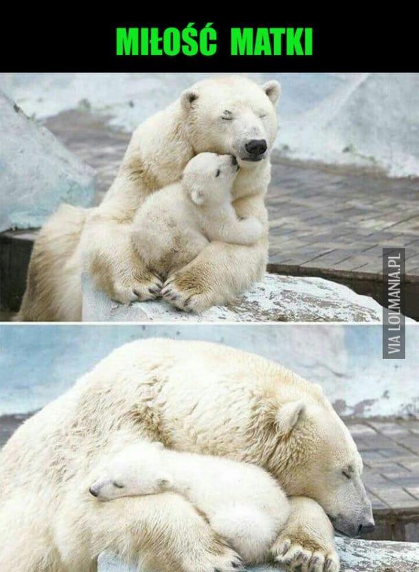 Miłość matki…