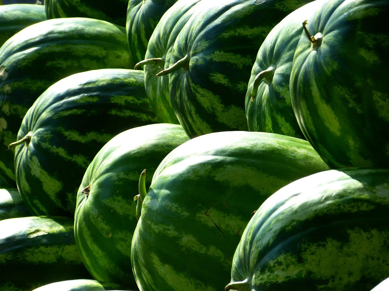 melons-197025_1280