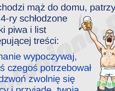 zonaty_mini
