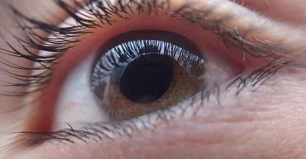 Dzięki temu olejowi poprawisz wzrok i wyleczysz zaćmę.