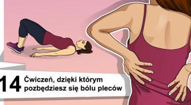 plecyw