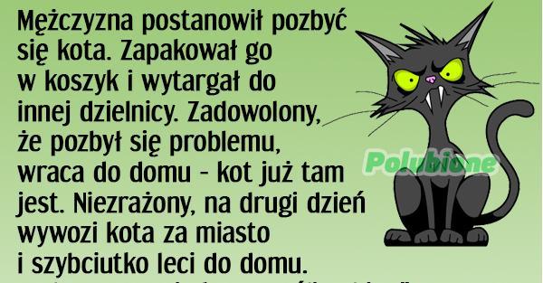 dow20_1_min