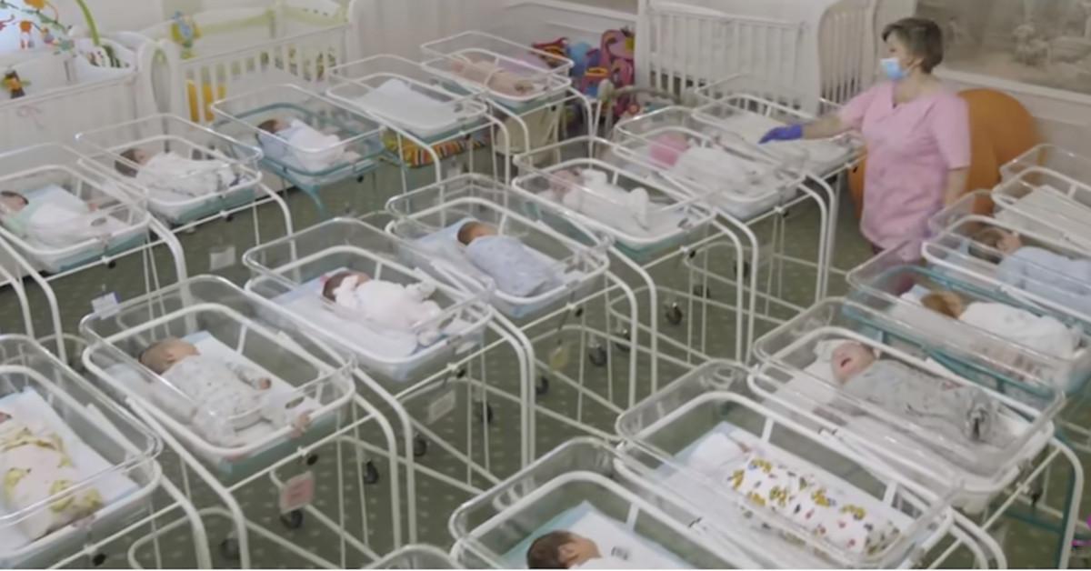 Ten widok poraża. Setki zamówionych noworodków czekają na odbiór. Nie ma co z nimi zrobić.