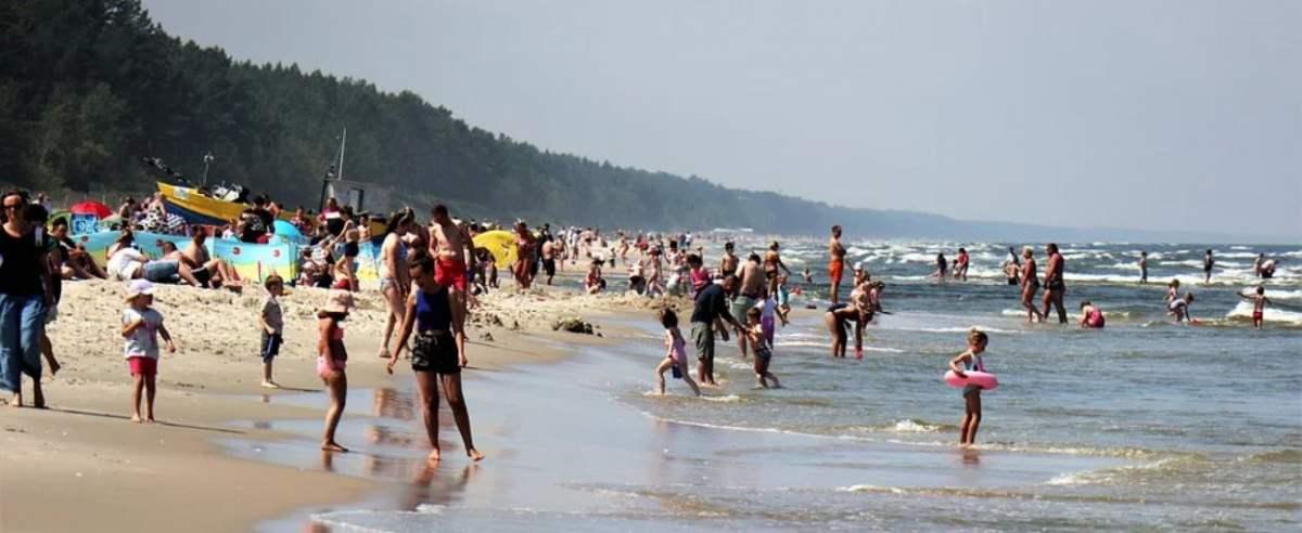 Skandaliczne sceny na polskiej plaży. Mężczyzna był bezlitosny dla psa.
