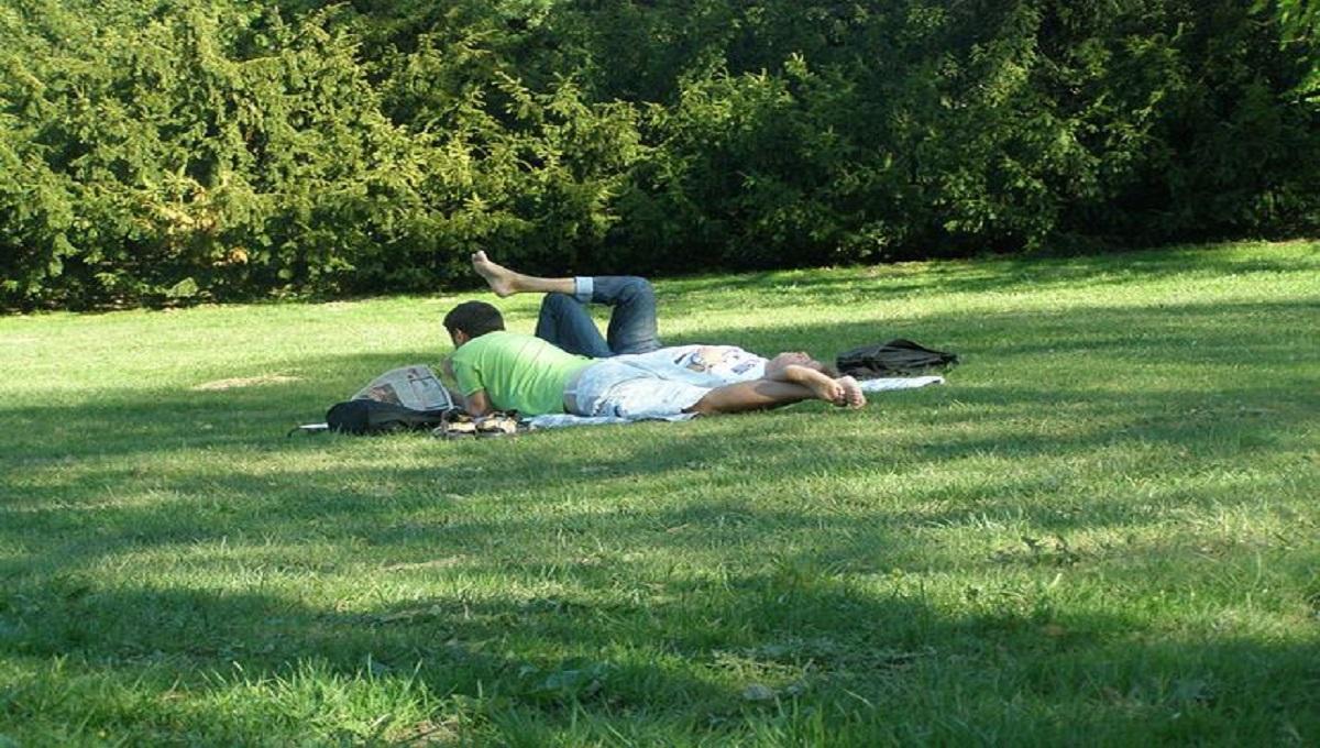 Niesamowite co się stało w parku w Warszawie w biały dzień. Najwyraźniej zapomnieli, że są w miejscu publicznym