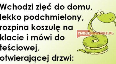 dowc51_w