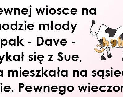 dowc114_w