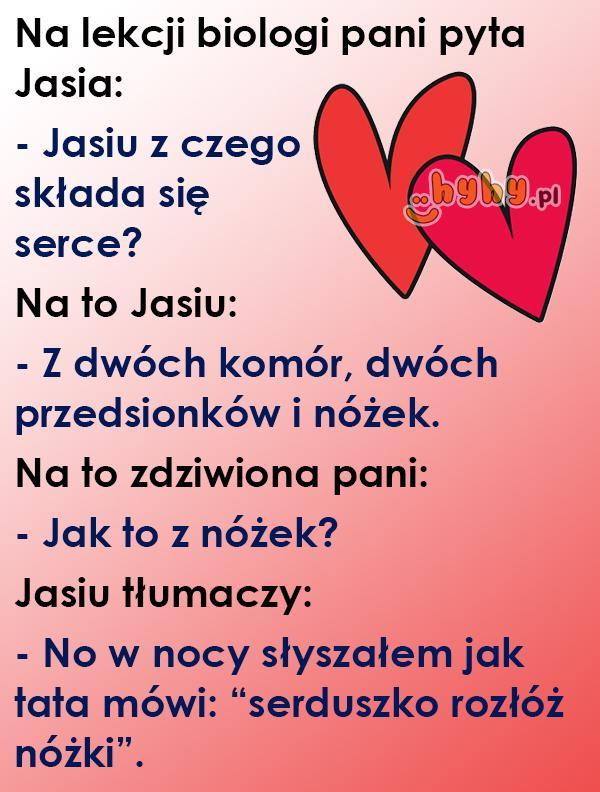 Z czego składa się serce?