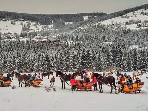 Turyści w Tatrach nie mają żadnych skrupułów. Konne zaprzęgi wypełnione po brzegi.
