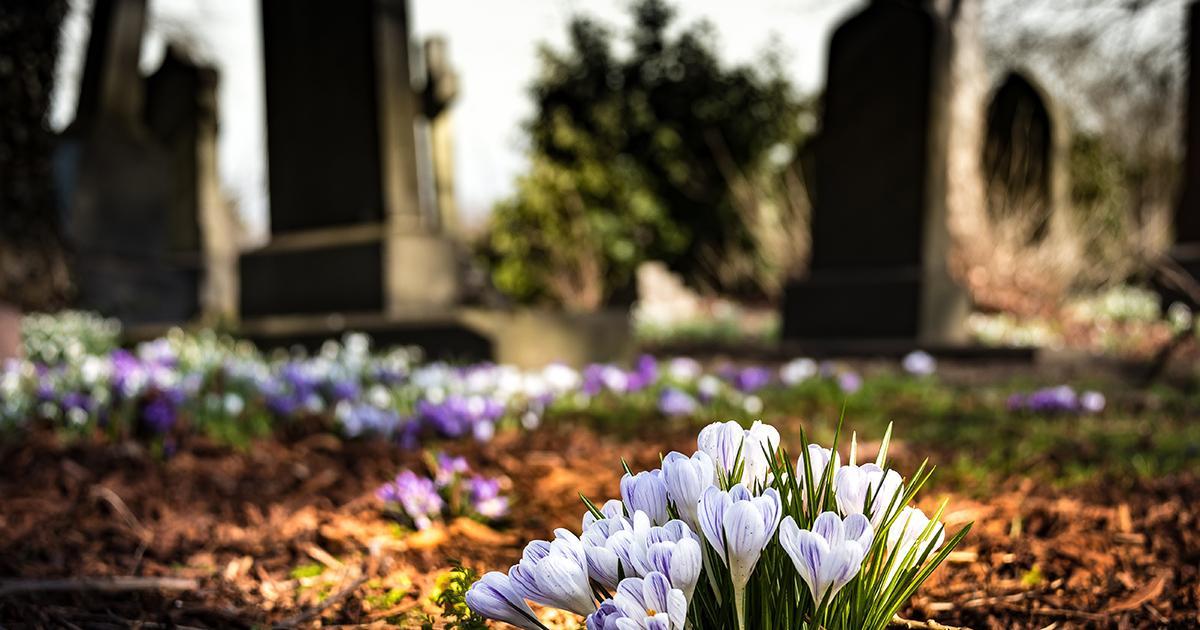 Makabryczne odkrycie na cmentarzu. Noworodek był przysypany ziemią.